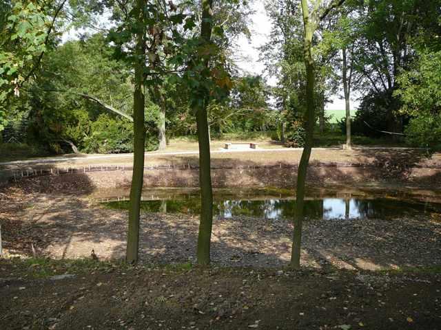 Sanierung des Teiches im Park der Gemeinde Friedrichsthal, OT Königsthal
